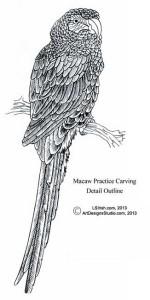 L S Irish macaw detail pattern