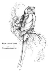 L S Irish macaw shaded pattern