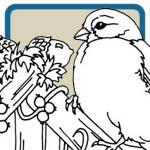 Goldfinch, Wren, Nuthatch, Bird House Patterns by Lora S Irish
