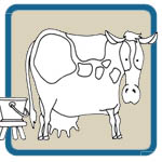 Folk Art Farm Animals Pattern Package