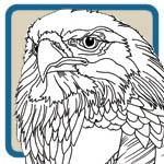 Birds of Prey, Eagles, Hawk Patterns by Lora S Irish
