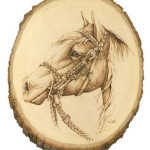 horse-whitebackground-254x300