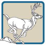 Lora Irish deer pattern