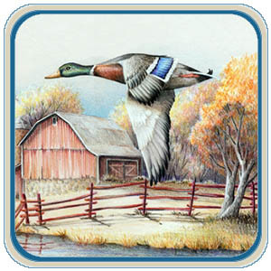 Duck, Geese, and Waterfowl Patterns